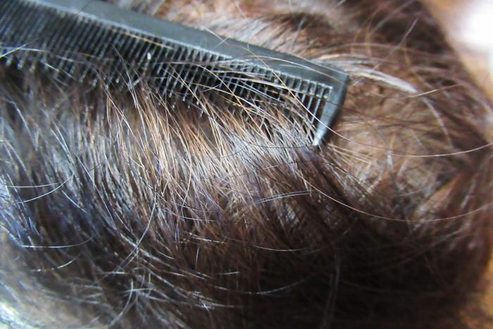 マイナチュレヘアーカラートリートメントで染めた頭のてっぺんの髪の拡大写真